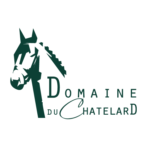 netsive-digital-agence-communication-web-marketing-references-domaine-du-chatelard